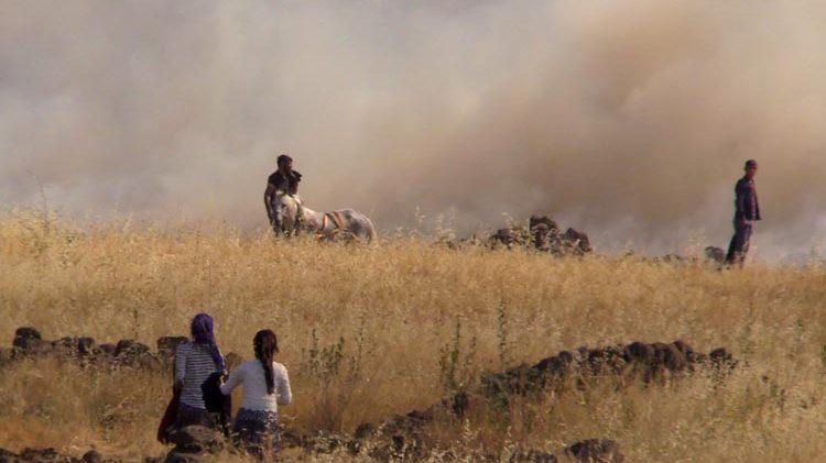 Bin dönümlük arazide yangın
