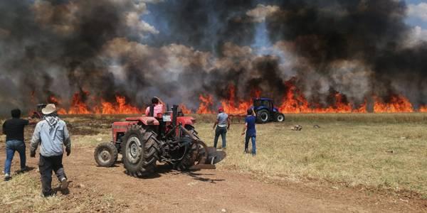 70 Dönümlük Buğday Tarlası Küle Döndü