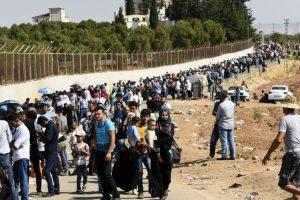 BM Türkiye'deki Mülteci ve Göçmen Sayısını Açıkladı