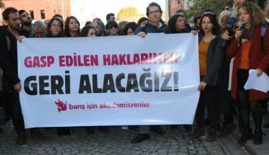 Barış İçin Akademisyenler: Gasp edilen haklarımızı geri alacağız