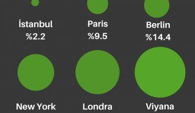 Büyük Şehirlerin Halka Açık Yeşil Alan Oranları