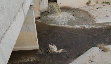 Fabrika Atıklarıyla Beslenen Nizip Çayı Zehir Saçıyor