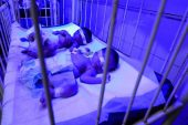 Gaziantep Bebek Ölümlerinde İlk Sırada!