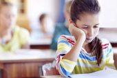 SHUDER: Çocuklar için okul sosyal hizmeti başlamalı