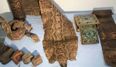 Şanlıurfa'da Orta Çağ'dan kalma piton derisi ele geçirildi